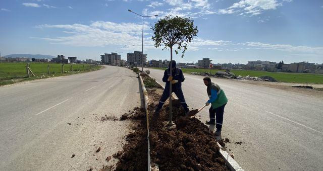 Adıyaman'da Ağaçlandırma Çalışmaları Tam Gaz Devam Ediyor